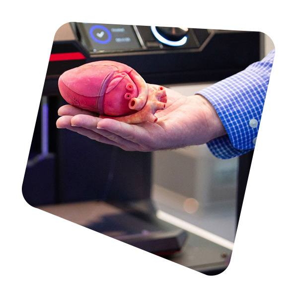 heart in hand image